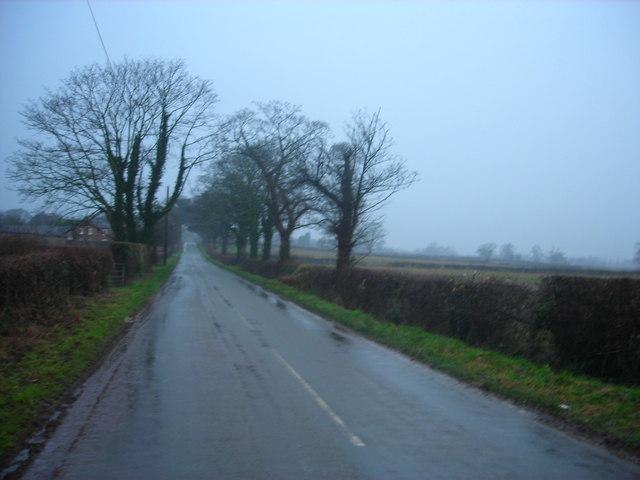 Sommerdekk for våte veier